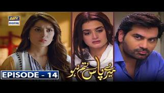 Meray Paas Tum Ho Episode 14 | 16th November 2019 | ARY Digital